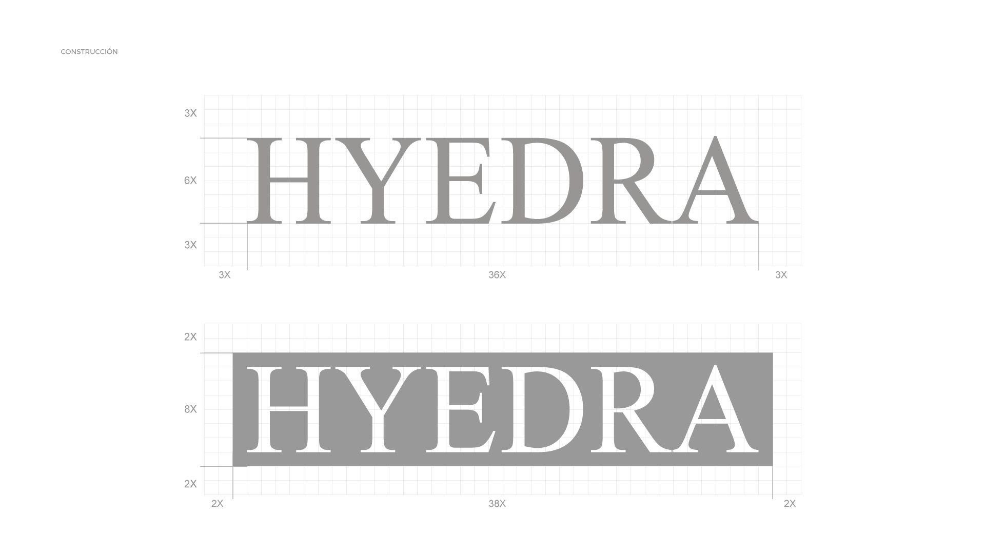 Logo-floristeria Hyedra-construcción